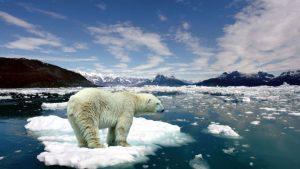 Es Kutub Utara terus mencair via http://thingpic.com