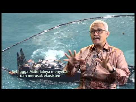 Prof. Herman Wahyudi: Rekayasa Teknis Reklamasi